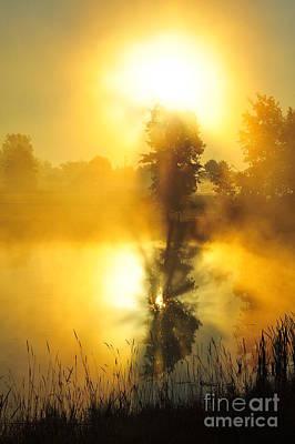 Nature Photograph - Splinter 2 by Terri Gostola