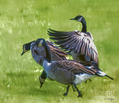 Canadian Geese Painting - The Magnificent Canada Geese by Ted Guhl