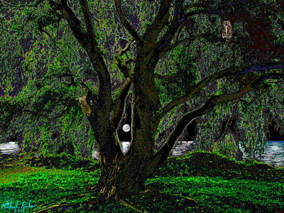 The Majestic Tree  Original by Michael Rucker
