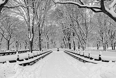 Photograph - The Mall At Central Park During A Snowstorm by Susan Candelario