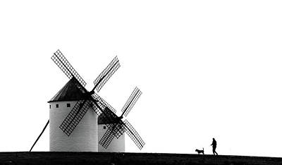 Netherlands Wall Art - Photograph - The Man, The Dog And The Windmills by J. Antonio Pardo