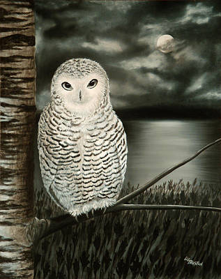 Black And White Owl Painting - The Marsh At Night by Liz Boston