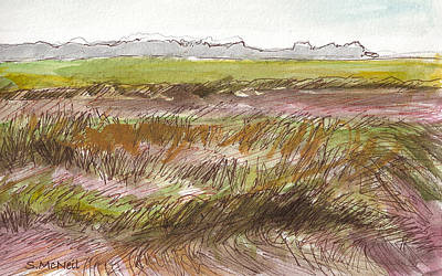 The Marsh At Wilmington Island Original by Sharon McNeil