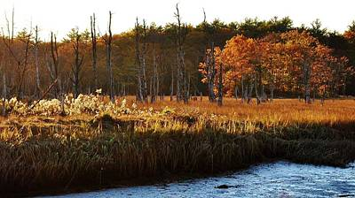 Art Print featuring the photograph The Marsh by Paul Noble