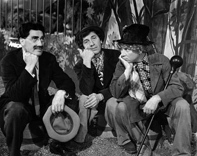 Ducks At Night Photograph - The Marx Brothers - At The Circus by Georgia Fowler