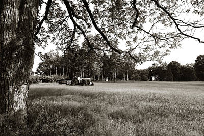 Photograph - The Meadow by Joseph G Holland