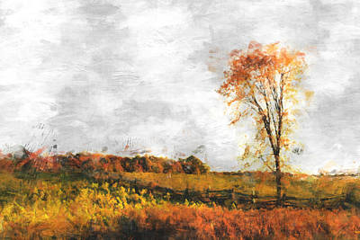 Autumn Landscape Photograph - The Meadow Tree - Pt01 by Variance Collections