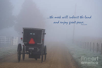 Amish Photograph - The Meek by David Arment