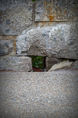 Photograph - The Hole In The Wall by Tikvah's Hope