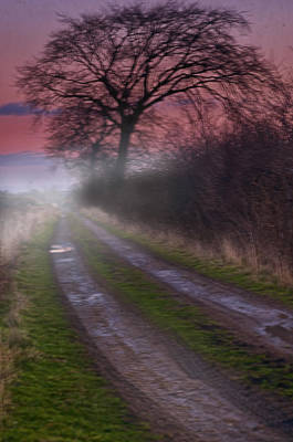 Photograph - The Mist By Dawn by Jean-Noel Nicolas