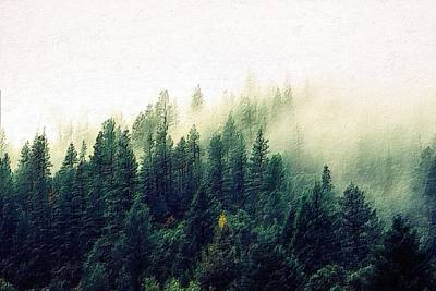 Painting - The Misty Forest by Florian Rodarte