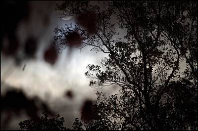 Gothic Photograph - The Moon Hides by Sharon Popek