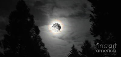 Photograph - The Moon Last Night by Mindy Bench