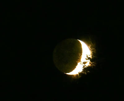Photograph - The Moon Last Night by Ronda Broatch