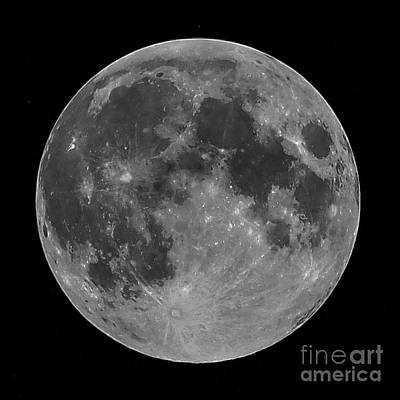 Photograph - The Moon by Michael Canning
