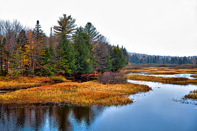 Fir Trees Photograph - The Moose River In The Adirondack's by David Patterson
