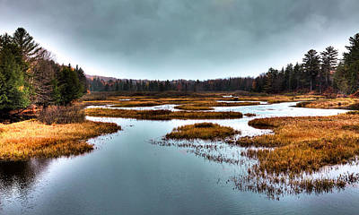 Fir Trees Photograph - The Moose River - Old Forge New York by David Patterson