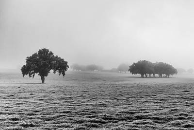 Photograph - The Morning Fog by Howard Salmon