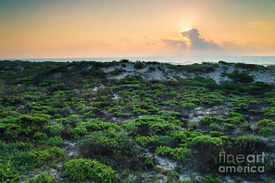 Corpus Christi Photograph - The Morning Sun And The Green Seashore by Ellie Teramoto