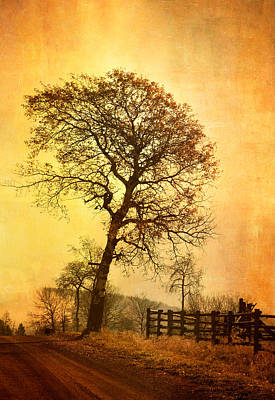 The Morning Tree Art Print