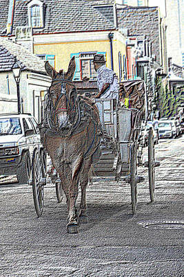 Photograph - The Mule Cart Guide by Nadalyn Larsen