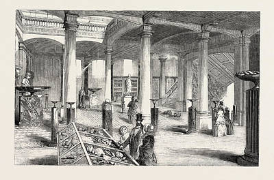 The Museum Of Practical Geology, The Great Hall Print by English School