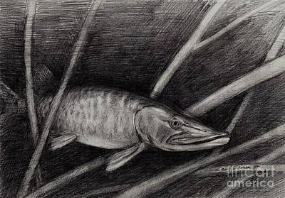 The Musky Art Print by Larry Green