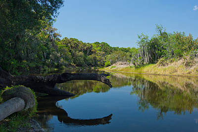 Photograph - The Myakka River In Myakka River State Park by John Myers