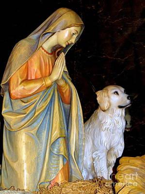 Photograph - The Nativity Dog by Ed Weidman
