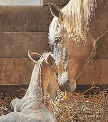 Drawing - The New Arrival Is Here by Helen Bailey