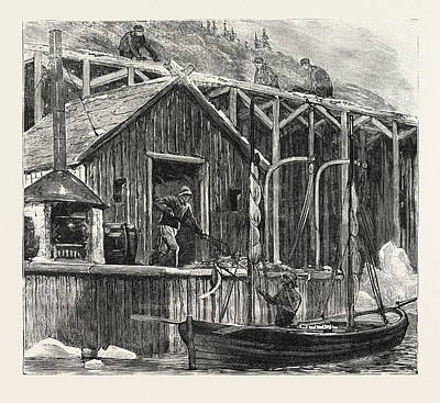 Newfoundland Drawing - The Newfoundland Fisheries Question British Fishing Room by Canadian School