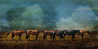 Chestnut Dun Horse Photograph - The Non-conformist by Karen Slagle