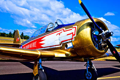 The North American T-6 Texan Airplane Art Print by David Patterson
