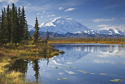 The North Face And Peak Of Mt. Mckinley Art Print by John Delapp
