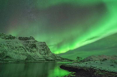 Photograph - The Northern Lights At Grøtfjord by Bernt Olsen
