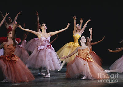 Ballet Dancers On The Stage Photograph - The Nutcracker Ballet Performance by James L. Amos