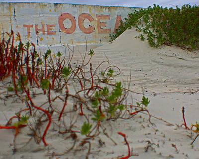 Photograph - The Ocean by Jon Emery