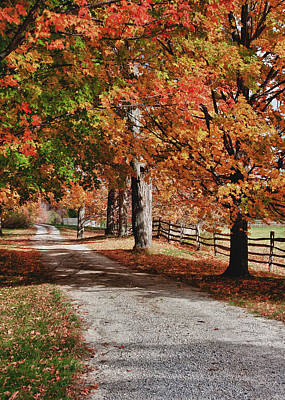 Split Rail Fence Photograph - The Old Back Road by Jeff Folger