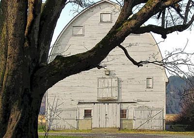 Photograph - The Old Barn by I'ina Van Lawick