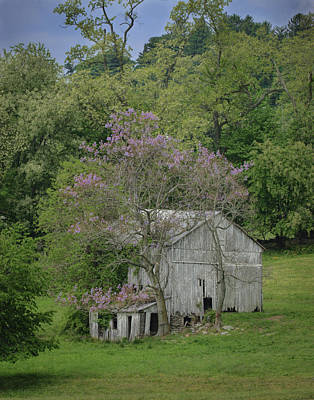 Photograph - The Old Barn by Ray Kent