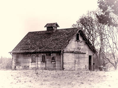 Photograph - The Old Barn by Ron Roberts