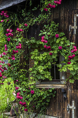 Charming Cottage Photograph - The Old Barn Window by Debra and Dave Vanderlaan