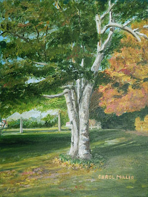 Painting - The Old Birch Tree by Carol L Miller