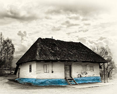 The  Old Blue House -1342  Art Print by Dorin Stef