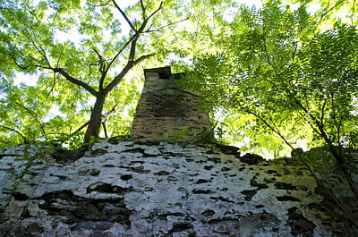 The Old Chimney In The Woods Art Print by Bill Cannon