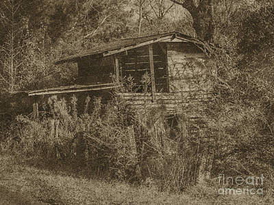 Photograph - The Old Crib by Ken Frischkorn