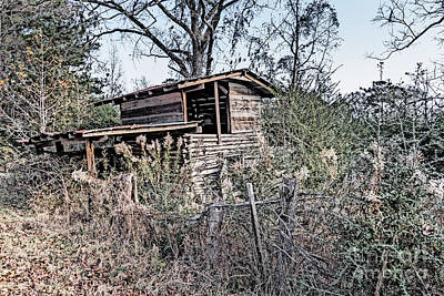 Photograph - The Old Crib Two by Ken Frischkorn