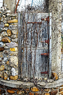 Photograph - The Old Door by Paul Mashburn