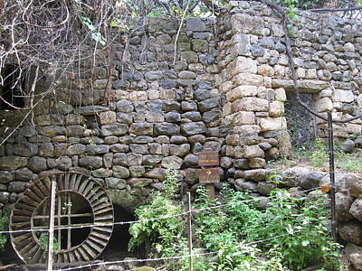 Photograph - The Old Flour Mill At Tel Dan by Esther Newman-Cohen