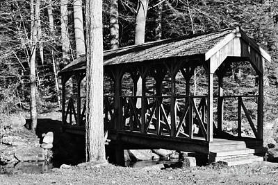 Photograph - The Old Footbridge by Barbara Bardzik